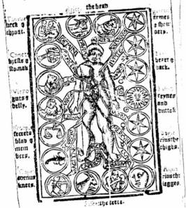 The anatomy of a mans body, as the parts thereof are governed by the 12 celestial signs