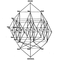 Er, a structure (by  Claude- Levi-Strauss: an actual theorist)