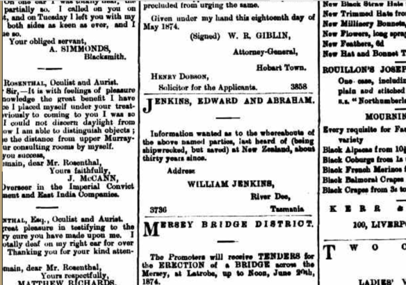 William Jenkins's advert in the Mercury (Hobart), week beginning 16 May 1874, p. 1