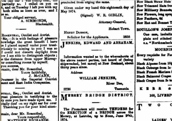 William Jenkins's advert in the Mercury (Hobart), week beginning 16 May 1874, p. 1
